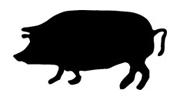 Grillrezepte Schweinefleisch