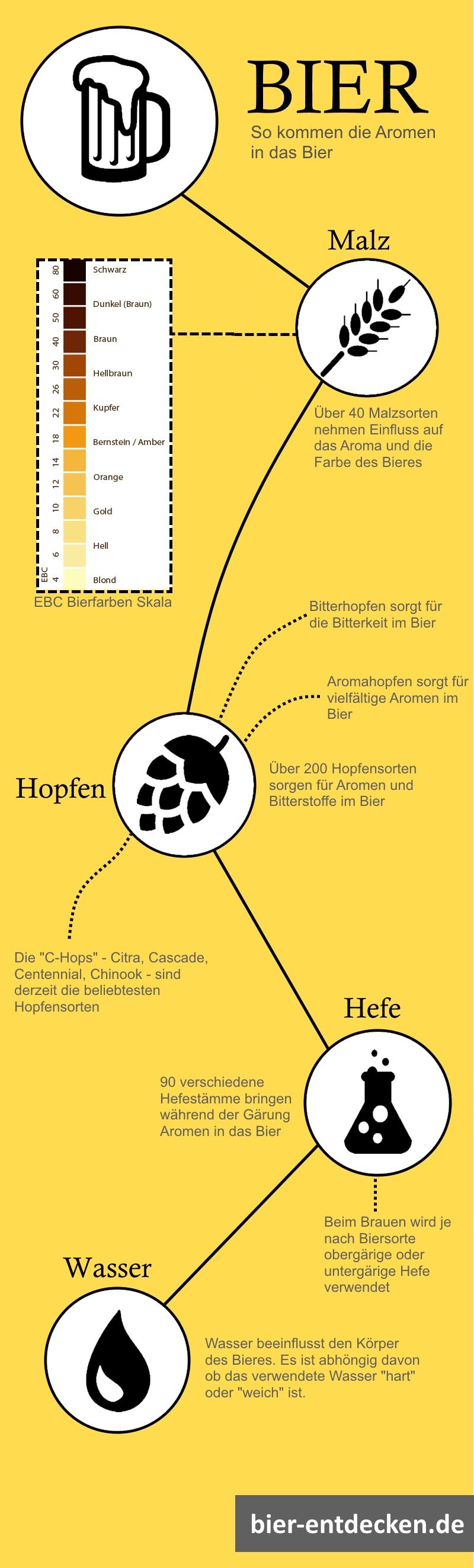 Bier-Leitfaden: Wie kommen die Aromen in das Bier